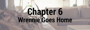 chapter 5 wrennie runs