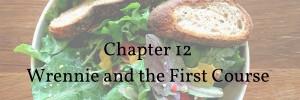 Copy of chapter 5 wrennie runs (1)